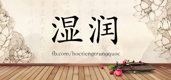 2041 – 湿润 – HSK5 – Từ điển tam ngữ 5099 từ vựng HSK 1-6