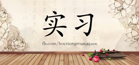 2046 – 实习 – HSK5 – Từ điển tam ngữ 5099 từ vựng HSK 1-6
