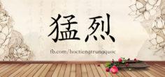 3738 – 猛烈 – HSK6 – Từ điển tam ngữ 5099 từ vựng HSK 1-6