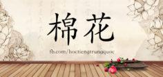 3748 – 棉花 – HSK6 – Từ điển tam ngữ 5099 từ vựng HSK 1-6