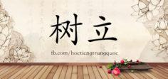 4195 – 树立 – HSK6 – Từ điển tam ngữ 5099 từ vựng HSK 1-6