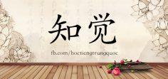 4845 – 知觉 – HSK6 – Từ điển tam ngữ 5099 từ vựng HSK 1-6