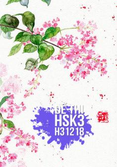 Xem, tải miễn phí đề thi HSK3 có đáp án (Kèm Audio) – Đề H31218.PDF